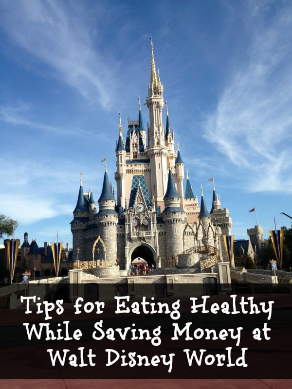 Tips for Eating Healthy While Saving Money at Walt Disney World
