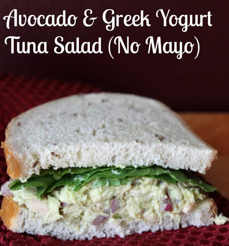 Avocado and Greek Yogurt Tuna Salad Recipe (No Mayonnaise) - Organize ...