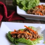 Asian Turkey Lettuce Wraps 171 calories and 5 weight watchers points plus
