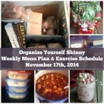 Weekly Meal Plan and Exercise Schedule November 19