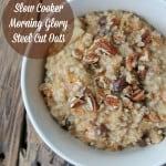 Slow Cooker Morning Glory Steel Cut Oatmeal Make-ahead Healthy Recipe