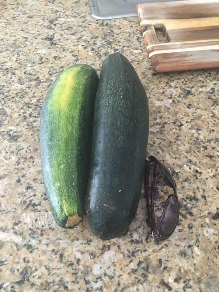 zucchinifbpic